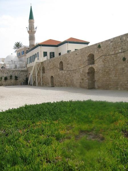 Haifa 2011 276