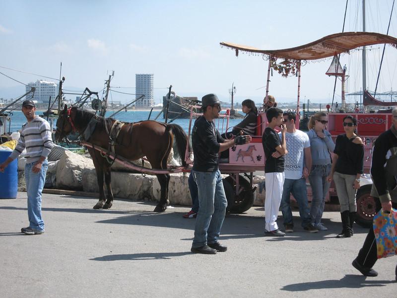 Haifa 2011 234
