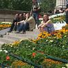 enjoying the sunshine and flower display