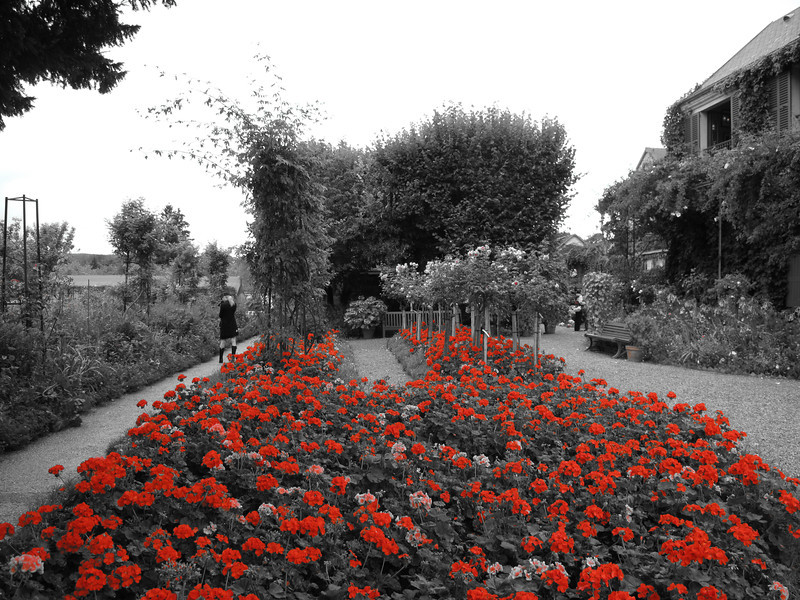 Giverny Flower Bed, Landscape in Red