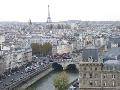 View from the top of Notre Dame - the Eiffel Tower.