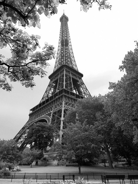 Eiffel Tower- First View