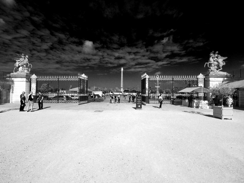 Leaving the Tulleries to the Place De La Concorde