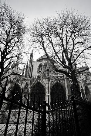 Notre Dame area at dusk (Paris)
