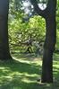 019  Paris - Jardin des Serres d'Auteuil