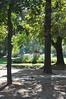 061  Paris - Jardin du Luxembourg