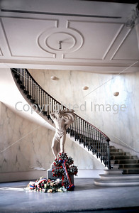 Paris, France, Interior Hallway Classical Stairway with Sculpture in Government Building, Hotel de Ville of 2nd District.