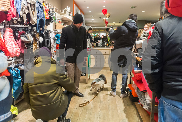 Paris, France, French People Shopping, inside Pet Store in the Marais