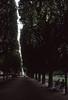 020  Jardin du Luxembourg, laan en bomenrij (p)