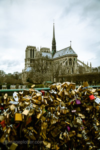 Padlocks on Pont de l'Archevêché with Notre Dame in the Background, Paris