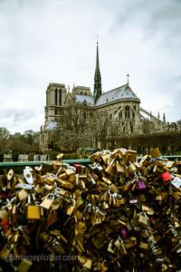 Padlocks on Pont de l'Archevêché with Notre Dame in the Background, Paris
