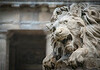 ~Lion Fountain~<br /> St Germain Church, Paris