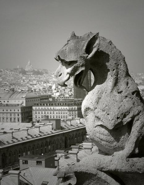 Notre Dame, Gargoyle