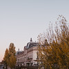 historic buildings and fall trees  in Paris at sunset