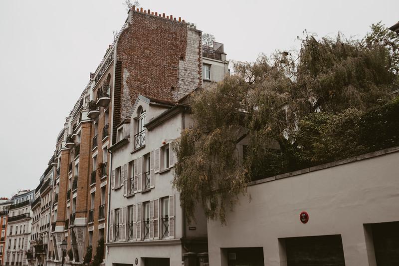 rooftop garden and brick buildings in Paris