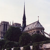Notre Dame from Bateaux Mouche (Seine cruise)
