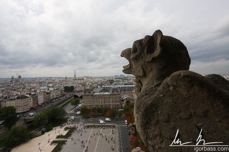Chimera ovelooking Paris (Paris, FR)