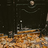fallen leaves gathered by a door in Paris