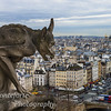 View from tower at Notre Dame