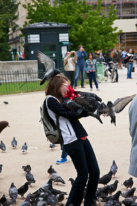 Attacked by Pigeons and laughing about it.