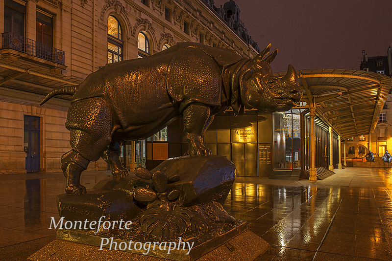 Rhino statue outside the d Orsay museum