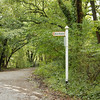 The sign post to Bere Alston. We finally had evidence that we were heading in the right direction.
