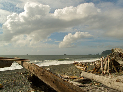 Neah Bay 4 Copyright 2009 Neil Stahl