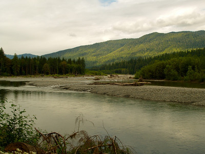 Quinault River Valley Copyright 2009 Neil Stahl