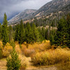 Shoshone National Forest of Wyoming - Landscape Image
