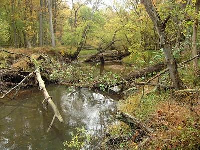 Rock Creek Park, Rockville Maryland - October 2004