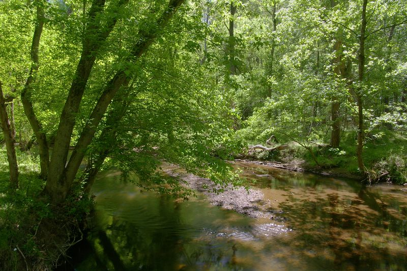 Rock Creek Park, Rockville Maryland - May 2005