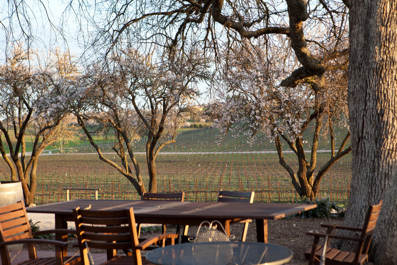 "A view from <a href=""http://www.pomarjunction.com/"">Pomar Junction Winery</a>."