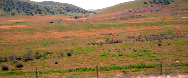 Paso Robles Overview