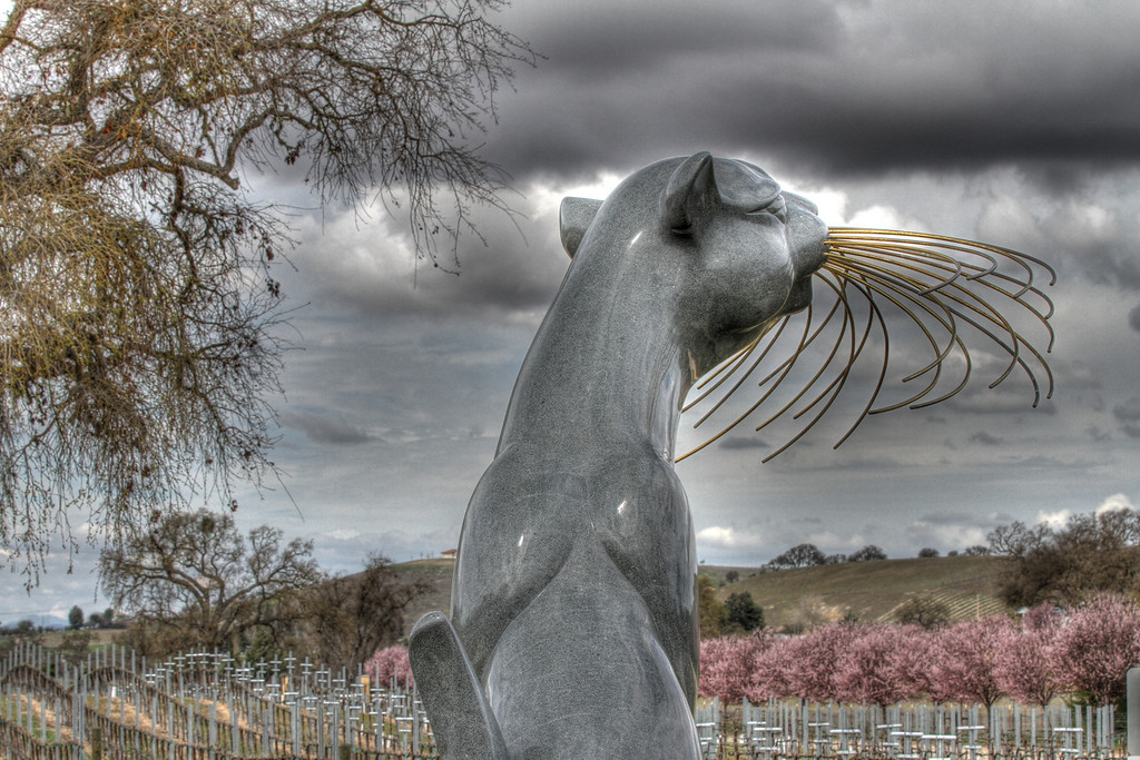 """Large cat sculpture called """"Golden Morning"""" by sculptor John Jagger.  This is the entry sculpture to Sculpterra Winery."""