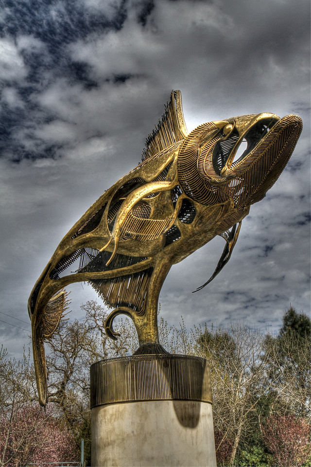 """Large fish sculpture called """"Tarpon"""" by sculptor John Jagger.  This is in the sculpture garden at Sculpterra Winery."""