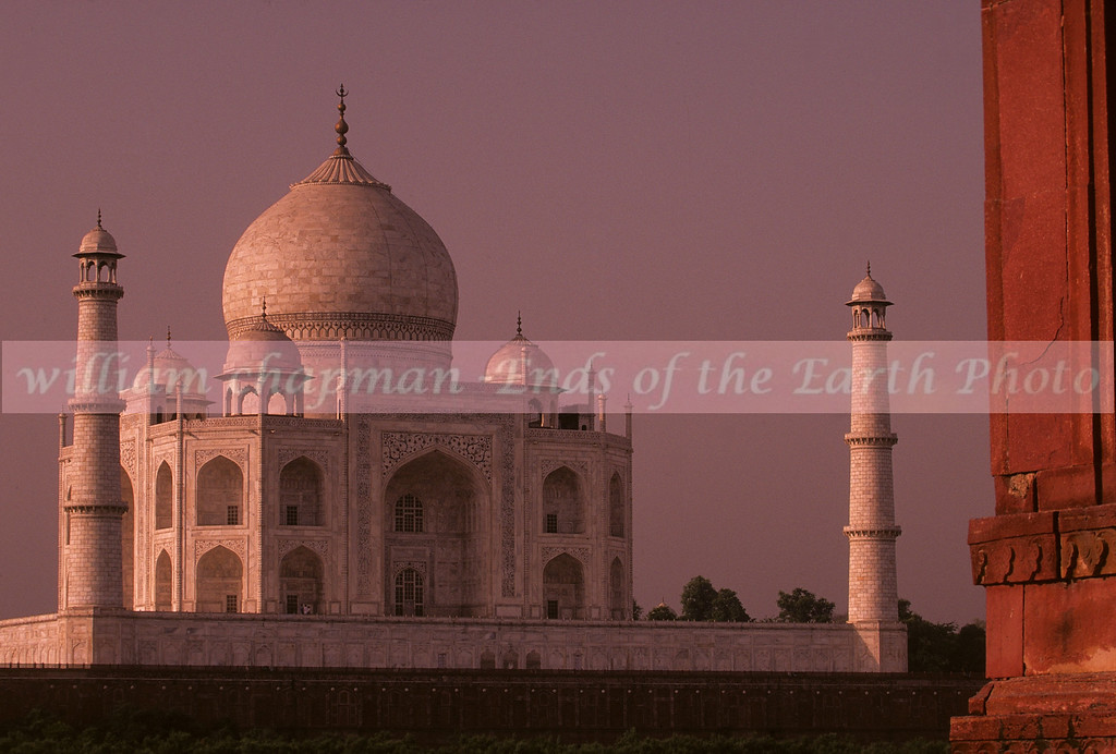 Taj Mahal from behind and across the river.