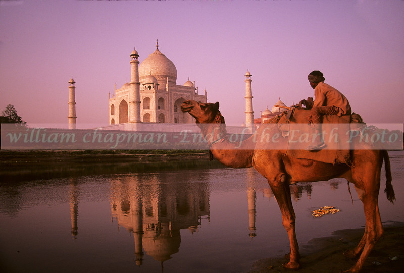 Early Morning Sun strikes the Taj mahal