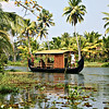 Kerala backwater.