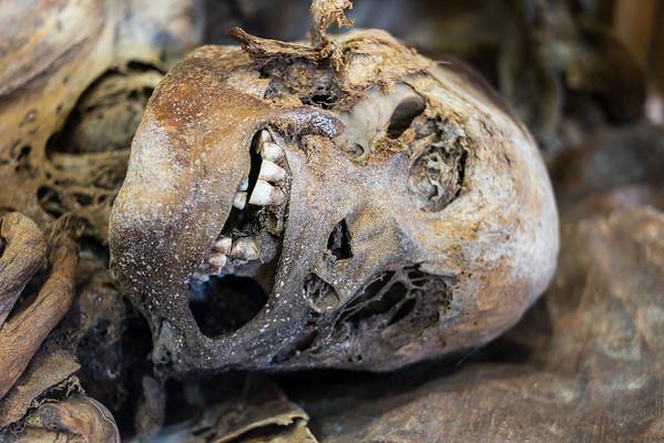 Mummy, museum in Porvenir