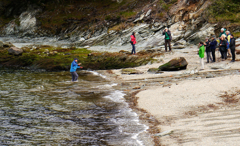 OAT Patagonia trip, Dec 2013.<br /> Ushuaia, Terra del Fuego National Park. Ensenada Bay. Laj gets into the water!