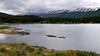 OAT Patagonia trip, Dec 2013.<br /> Ushuaia. Terra del Fuego National Park.