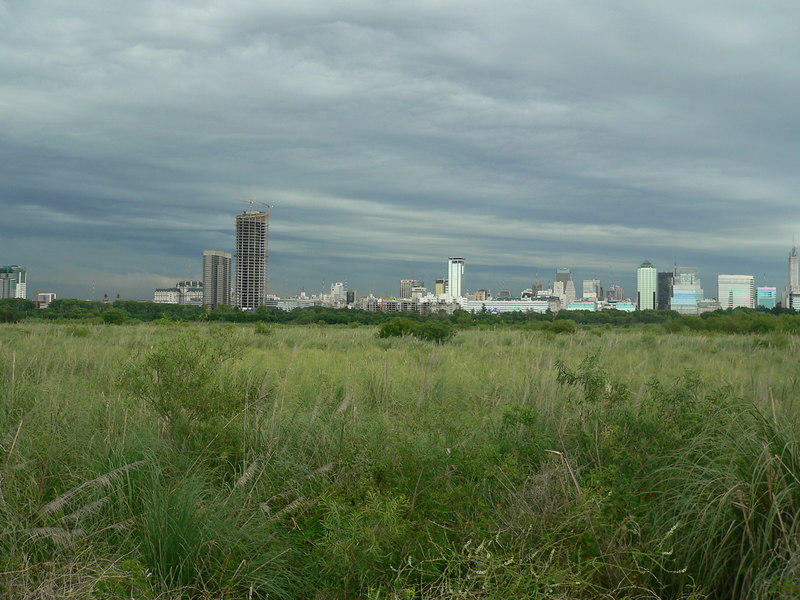 Looking back at Buenos Aires from the nature preserve along the coast