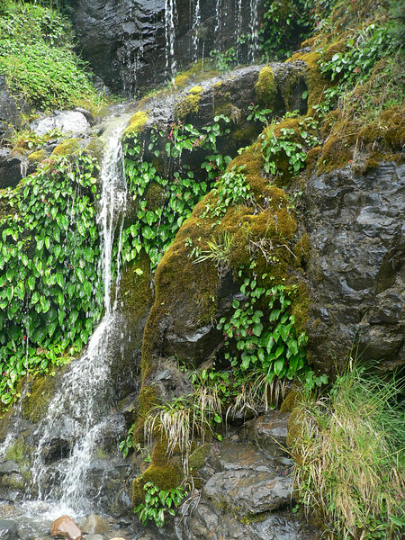 a waterfall on the trail