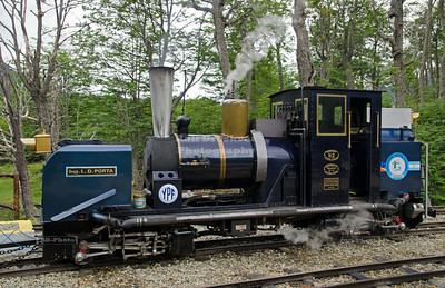 The tiny steam locomotive Engineer L.D. Porta in Tierra Del Fuego National Park, Patagonia, Argentina. The locomotive was named after Livio Dante Porta, an Argentine engineer who played a big role in building this locomotive in 1994.