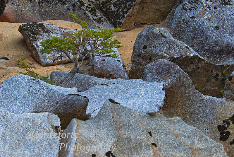 Sculptured rocks in river at El Palomar ranch, Chile # 2