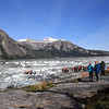 After the Glacier calving which caused a wave in the water and swept away the blue  plank for the guest to walk on going ashore. The crew had to reach deep down into the water to retrieve the plank.