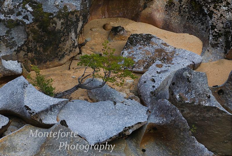 Sculptured rocks in river at El Palomar Ranch, Chile