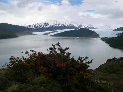 Grey Glacier flowing into Lago Grey