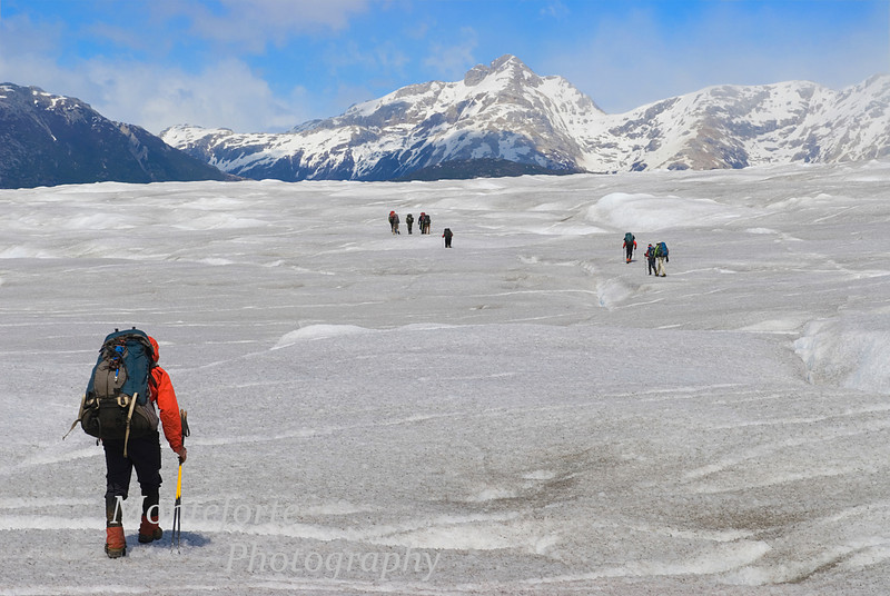 Crossing the Nef Glacier on the Aysen Glacier Trail in the Patagonia area of Chile.