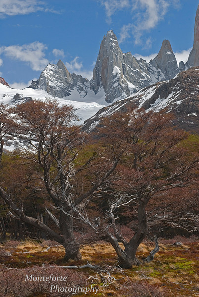 Glaciar Piedras Blancas Natinoal Park, Fitz Roy in Background, Argentina